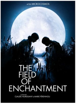 Field of enchantment