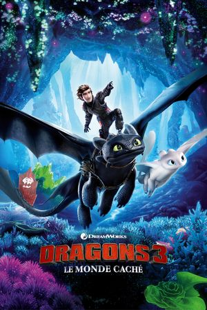 How to train your Dragon 3 - Famille, Animation