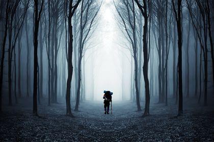 Compostelle, le Chemin de la Vie - Picture 2