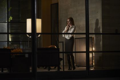 Nocturnal Animals - Picture 4