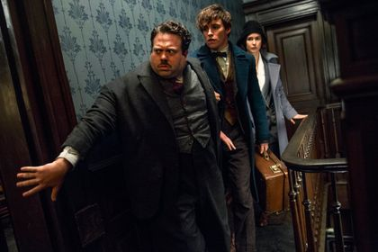 Fantastic Beasts and Where to Find Them - Foto 24