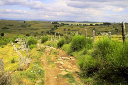 Compostelle, le Chemin de la Vie - Foto 10