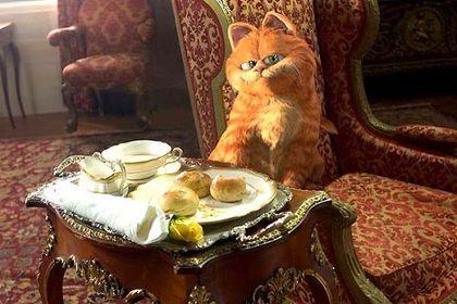 Garfield 2 - Foto 2
