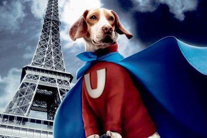 Underdog - Foto 1