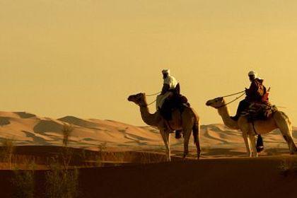 Nuits d'Arabie - Foto 3