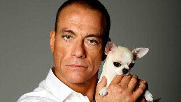 GAIA en Jean-Claude Van Damme werken samen voor dierenwelzijn - Actueel