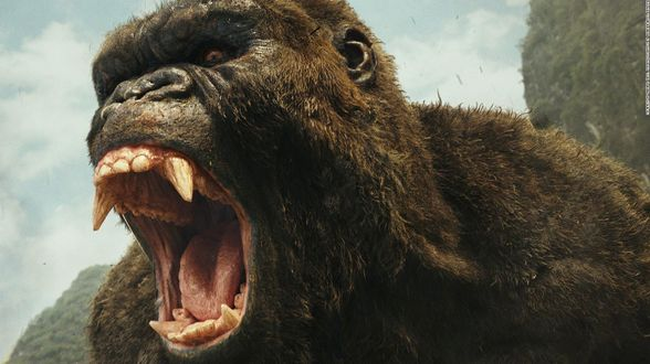 Kong Skull Island, Logan, Ghost in the Shell, Birth of a Nation,… Uw dvd review. - Actueel