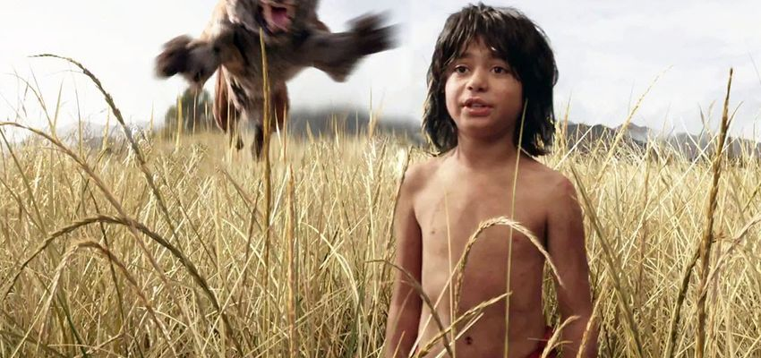 The Jungle Book: Het wonderlijke oerwoud